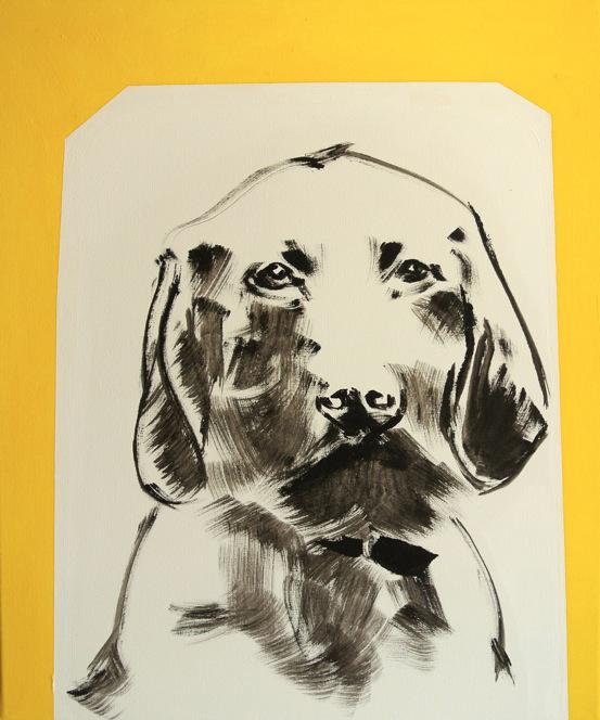 Titanilla Eisenhart, HUND (GELD) 60 x 50 cm Acryl auf Leinwand 2017
